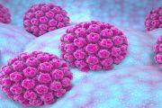 Υψηλού και χαμηλού κινδύνου HPV
